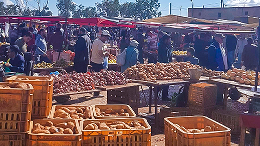 ارتفاع صاروخي لأسعار الخضر والفواكه بسوق سلوان.. الجزر 17 درهما و الطماطم 15 درهما للكيلوغرام