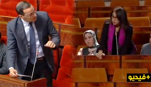 البرلمانية فاطمة سعدي تثير تراجع مردودية تدريس اللغة الأمازيغية