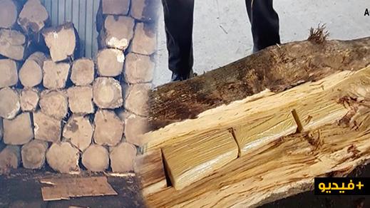 تفكيك عصابة كانت تهرب الكوكايين داخل الخشب من أمريكا الجنوبية  الى ميناءي أنتويربن والجزيرة الخضراء