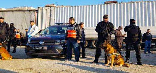 بالصور.. حجز حوالي 14 طنا من مخدر الحشيش كانت داخل شاحنة مقطورة