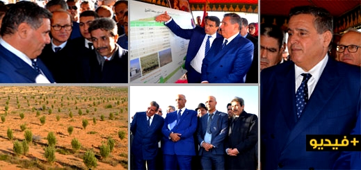 الدريوش.. أخنوش يطلع على حصيلة مشاريع المغرب الأخضر ويعطي انطلاقة مشروع بكلفة 38 مليون درهم بتفرسيت