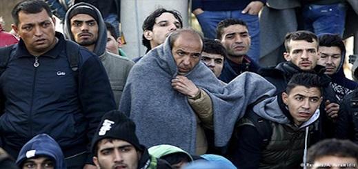 ألمانيا رحلت من أراضيها 665 مهاجرا إلى المغرب و53 مهاجرا اختاروا العودة طواعية