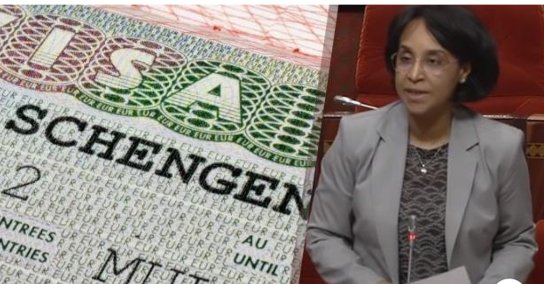 """أزمة مواعيد """"فيزا شنغن"""".. الوزارة المعنية تتدخل"""