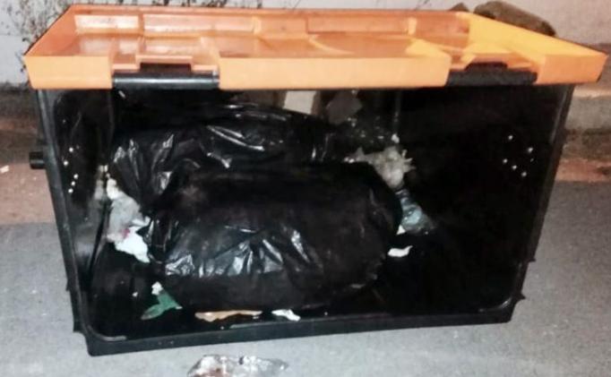 توقيف سائق شاحنة لنقل النفايات ومساعده أدخلا 250 كلغ من الحشيش داخل أكياس النفايات الى الميناء