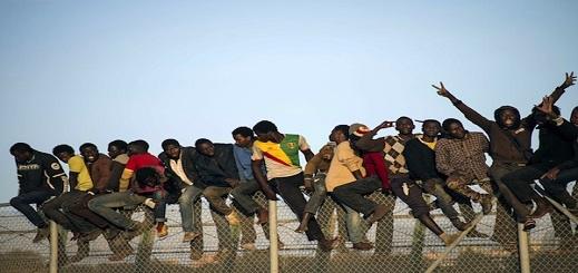 استنفار أمني بحدود الثغر المحتل تأهبا للتصدي لـ500 مهاجر سري