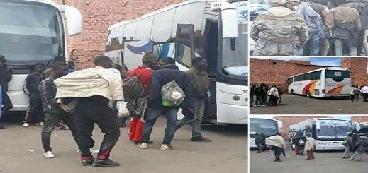 هيئة حقوقية بالناظور: السلطات تُلزم شركات النقل العمومي بعدم نقل المهاجرين ولون الجلد هو المعيار