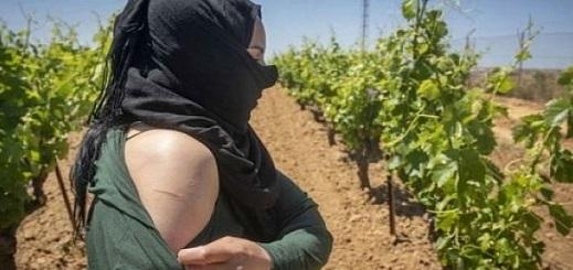 """عاملة فراولة مغربية حاولت الانتقام من إسباني بتلفيقه تهمة """"الاغتصاب"""".. فكان هذا مصيرها"""