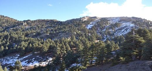 السلطات تتدخل لإنقاذ شابين حاصرتهما الثلوج وسط جبال تدغين
