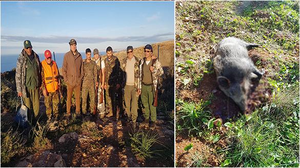 """جمعية """"آيت سعيذ للقنص وحماية البيئة"""" تشرع في إحاشة الخنزير البري بأمجاو ودار الكبداني"""