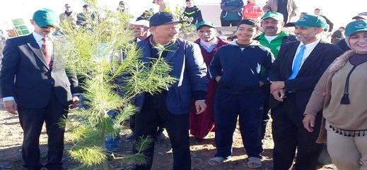 المديرية الجهوية للمياه والغابات تطلق حملة للتشجير الغابوي بإقليم الحسيمة على مساحة 854 هكتار