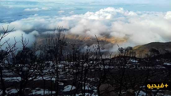 شاهدوا بالفيديو.. بياض الثلوج يغطي سواد الأشجار المتفحمة بغابة أفرني المحروقة