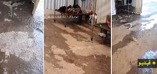 """شاهدوا الظروف اللإنسانية التي يعيشها مغاربة داخل """"مخيم العار"""" بعدما علقوا بمليلية بسبب كورونا"""