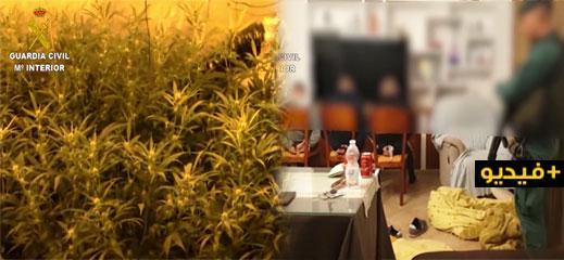شاهدوا.. تنسيق أمني مغربي اسباني ينجح في تفكيك شبكة كبيرة لتهريب المخدرات وتوقيف العشرات