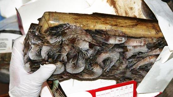 """الصين توقف وارداتها من """"الغامبا"""" من شركات إكوادورية بعد ظهور كورونا في العينات"""