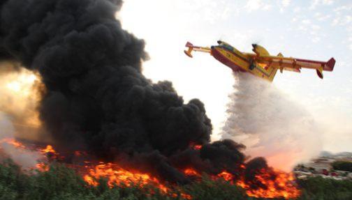 السيطرة على حريق أتى على 36 هكتارا من الغطاء الغابوي بطنجة