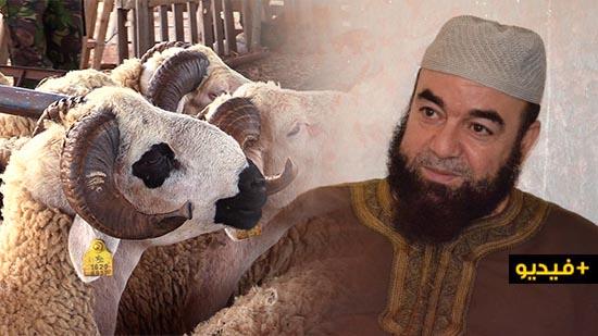 الشيخ نجيب الزروالي.. هل الأفضل الأضحية أم الصدقة؟