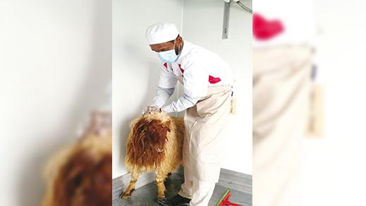 """""""لجنة كورونا"""" تتوقّع تزايد أعداد المصابين المغربة بكوفيد 19 خلال عيد الأضحى"""