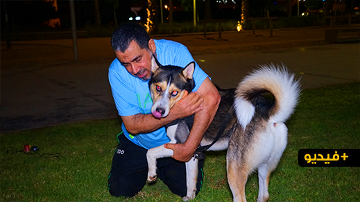 بورتريه.. قصة عزي أحمد مع كلبه الذي لا يفارقه