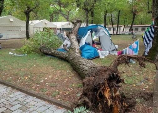 عطلة عائلة مغربية تنتهي بمأساة.. وفاة طفلتين بعد سقوط شجرة على خيمتهما