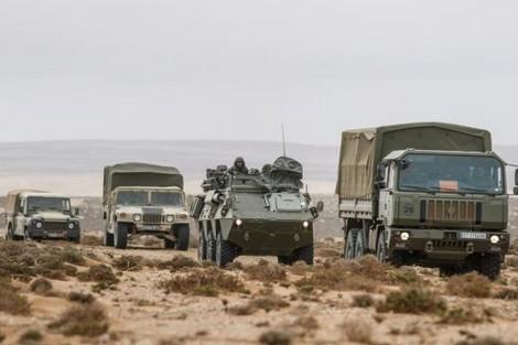 تحرّكات الجيش المغربي لاستعادة أراض خلف الجدار العازل تثير تخوفات العسكر الحاكمين بالجزائر