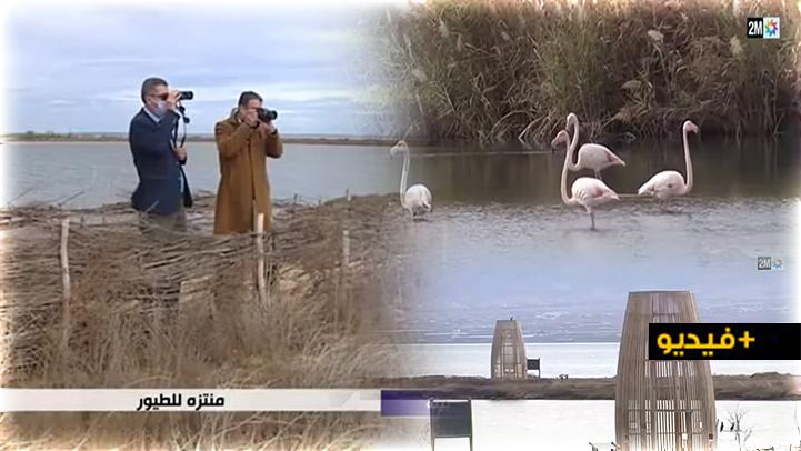 ربورتاج للقناة الثانية يسلط الضوء على مميزات منتزه الطيور ببحيرة مارتشيكا بالناظور
