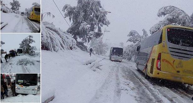 الأمطار والثلوج تقتلع الأشجار وتقطع الطرق والكهرباء وتقتل شخصا في غفساي وتجرف تلميذة