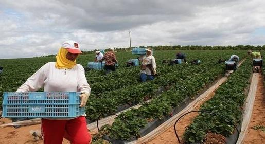 """تقرير لمنظمة """"هيومن رايتس ووتش"""" يرصد معاناة """"الحراكة"""" والعمال المغاربة بإسبانيا"""