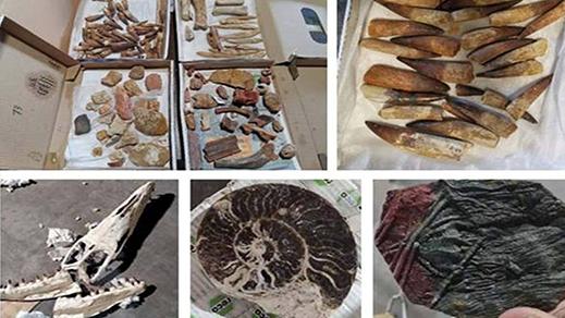الجمارك تحبط عملية تهريب حوالي 200 كيلوغرام من القطع الجيولوجية والأثرية