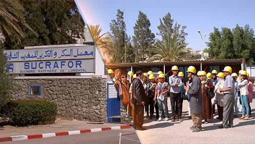أزيد من 300 عامل مهددون بالتشرد بسبب مخاوف من إغلاق معمل السكر بزايو