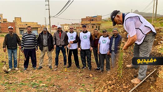 """جمعية """"بادر"""" تغرس 100 شجرة في حي """"إفري أشار"""" بالناظور"""