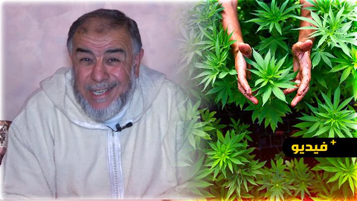 الشيخ عبد الله نهاري: مادة الكيف حرام في الأصل وتقنينه دمار للبلاد والعباد