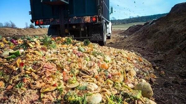 كل مغربي يرمي حوالي 91 كلغ من الأطعمة في القمامة سنويا