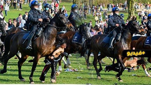 شاهدوا.. امرأة دهسها حصان شرطة في تجمهر ببروكسيل