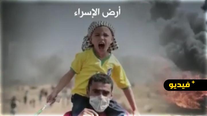 شاهدوا.. نزيهة المنتصر في قصيدة فلسطينية