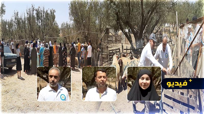 جمعية الريف لمساعدة الأطفال توزع 45 أضحية على اليتامى والمعوزين