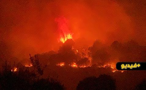شاهدوا.. تفاصيل إندلاع حريق غابة كوروكو بالناظور وتدخل عناصر الوقاية المدنية