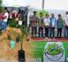 سمايل للثقافة بالناظور تلبس الكورنيش المدينة حلة بيئية في إفتتاح الدورة الأولى من الأسبوع الأخضر