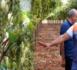 بالصور.. مومني يستعرض أمام فلاحي جهة الشرق مميزات ضيعات العنب بجماعة تزطوطين