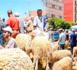 """ربورتاج ينقل أجواء سوق المواشي بـ""""دار الكبداني"""" ويرصد أسعار الأضاحي"""