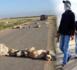 عودة نشاط العصابات الإجرامية يقلق مستعملي الطريق الساحلية بالناظور