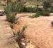 تساقطات مطرية مهمة بالريف تعيد المياه الى الجريان في الأدوية