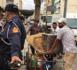 السلطات تصادر عربات مجرورة وتُجلي شوارع الناظور من محتلي الأملاك العامة