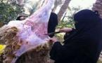 هذه عقوبة مهاجرة مغربية بإيطاليا ذبحت خروفين بطريقة سرية في بيتها يوم عيد الأضحى