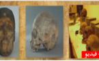 """شاهدوا الفيديو.. جماجم مقاومين قطعت رؤوسهم """"مخبأة"""" في متحف الإنسان بباريس"""