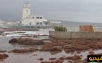 بسبب الرياح القوية هيجان بالبحيرة وعمال مارتشيكا على قدم وساق لتنقية أرصفة الكورنيش
