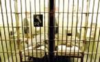 إيداع جميع المتورطين في شبكات الاتجار في المخدرات على الصعيد الدولي السجن