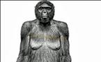 القردة تبرّيء نفسها: أنا لست أصل الإنسان