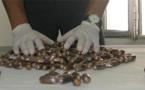 العثور على 1550 غراما من مخدر الكوكايين داخل أمعاء مواطن نيجيري