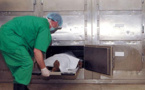 """التشريح الطبي يكشف مقتل """"حراك مغربي"""" بواسطة رصاصة اخترقت عنقه"""