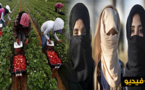 """شعارات قوية ب""""هويلفا"""" الاسبانية تضامنا مع عاملات حقول الفراولة"""
